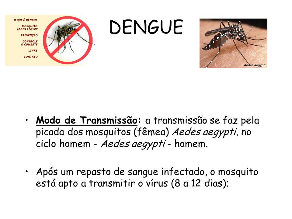 DENGUE Modo de Transmissão: a transmissão se faz pela picada dos mosquitos (fêmea) Aedes aegypti, no ciclo homem - Aedes aegypti - homem. Após um repa