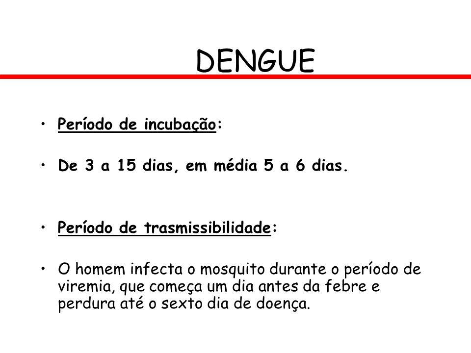DENGUE Período de incubação: De 3 a 15 dias, em média 5 a 6 dias. Período de trasmissibilidade: O homem infecta o mosquito durante o período de viremi