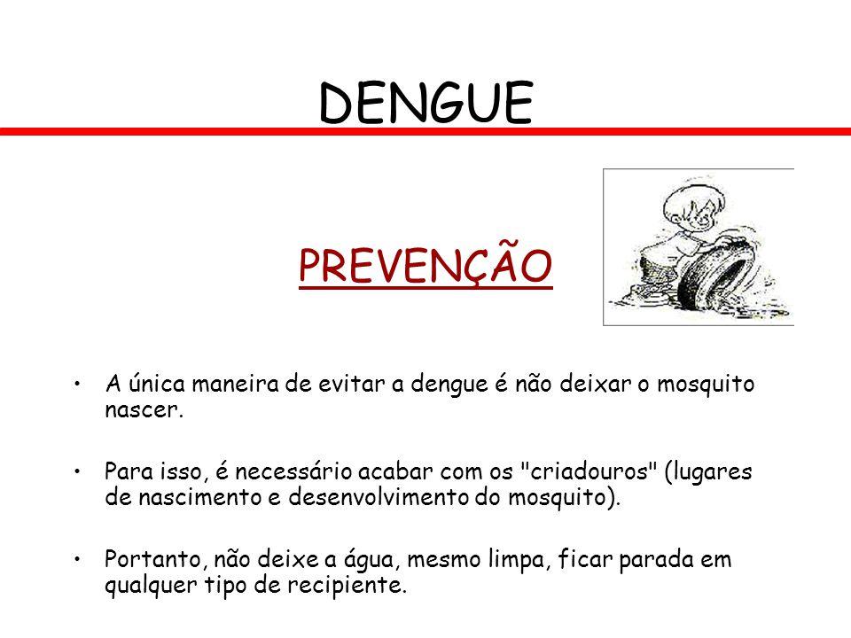 PREVENÇÃO A única maneira de evitar a dengue é não deixar o mosquito nascer. Para isso, é necessário acabar com os