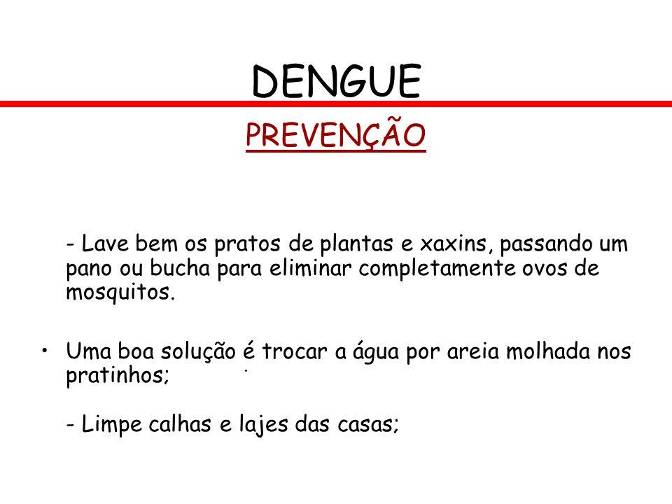 PREVENÇÃO - Lave bem os pratos de plantas e xaxins, passando um pano ou bucha para eliminar completamente ovos de mosquitos. Uma boa solução é trocar