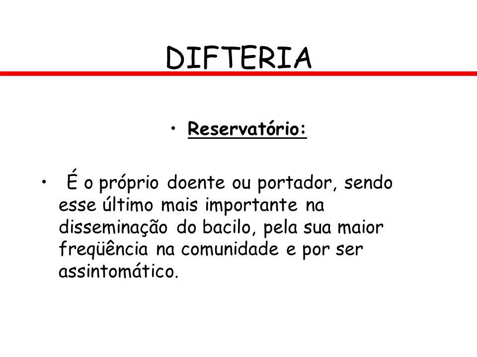 DIFTERIA Reservatório: É o próprio doente ou portador, sendo esse último mais importante na disseminação do bacilo, pela sua maior freqüência na comun