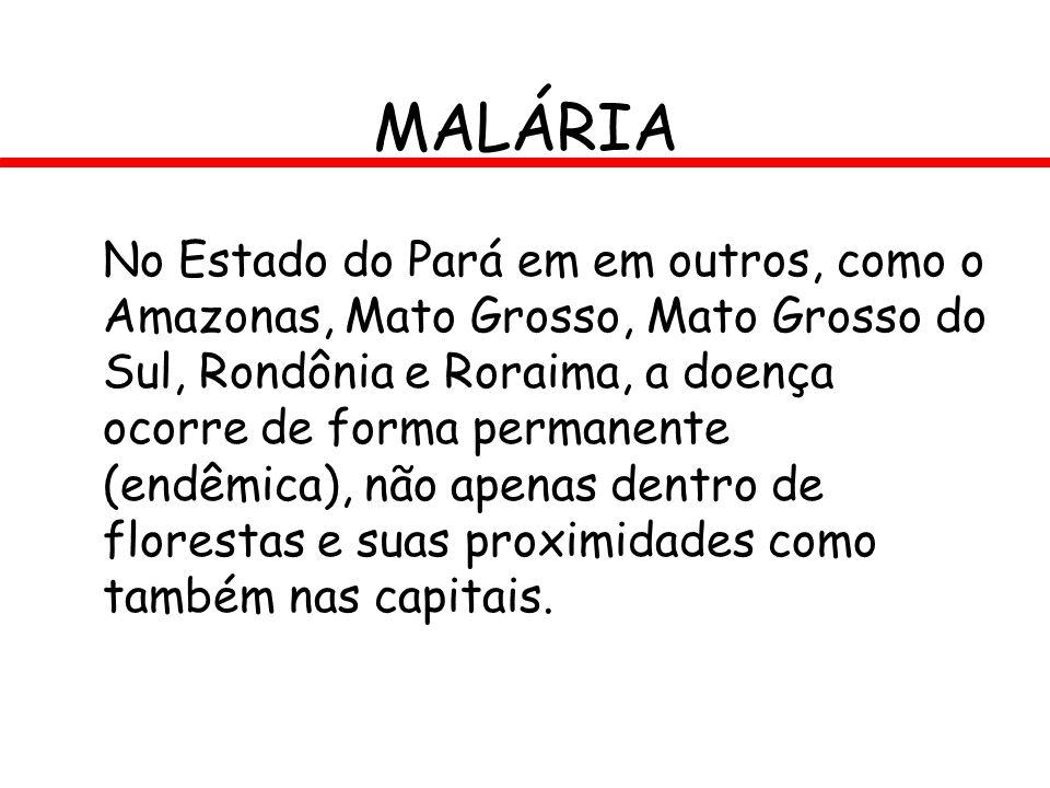 MALÁRIA No Estado do Pará em em outros, como o Amazonas, Mato Grosso, Mato Grosso do Sul, Rondônia e Roraima, a doença ocorre de forma permanente (end