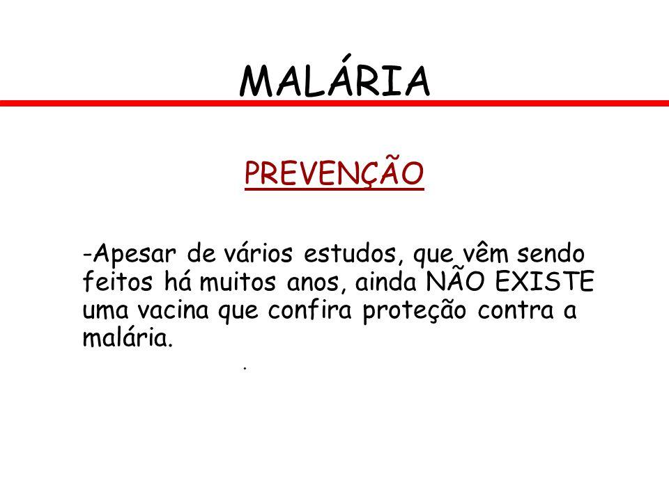 PREVENÇÃO -Apesar de vários estudos, que vêm sendo feitos há muitos anos, ainda NÃO EXISTE uma vacina que confira proteção contra a malária. MALÁRIA.