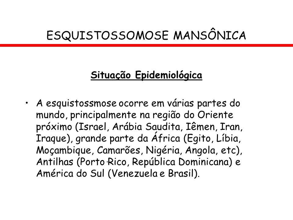 Situação Epidemiológica A esquistossmose ocorre em várias partes do mundo, principalmente na região do Oriente próximo (Israel, Arábia Saudita, Iêmen,
