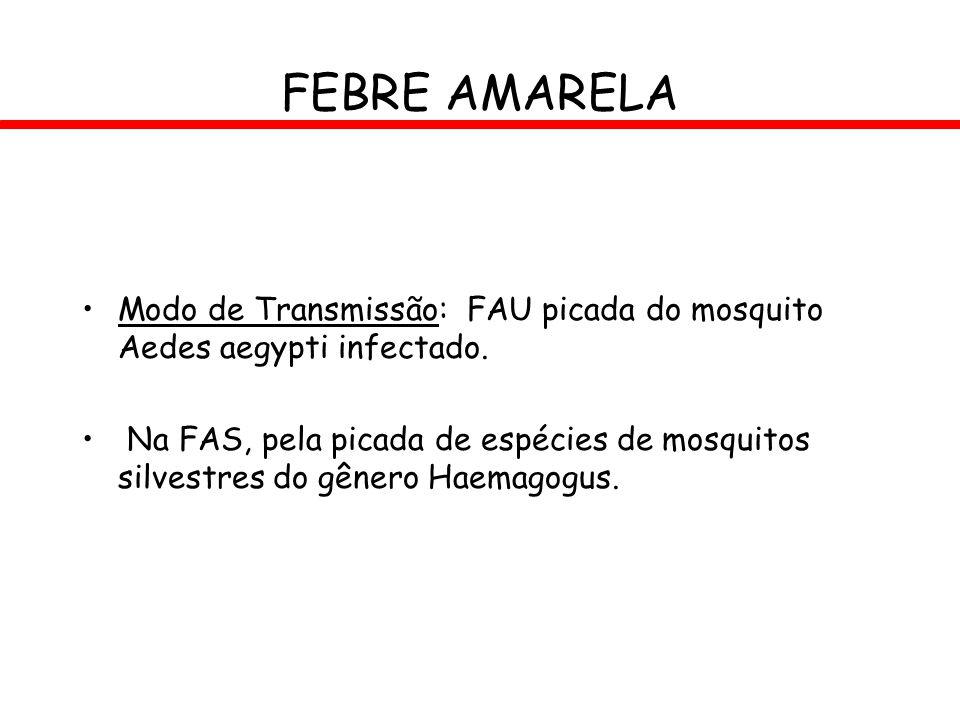 FEBRE AMARELA Modo de Transmissão: FAU picada do mosquito Aedes aegypti infectado. Na FAS, pela picada de espécies de mosquitos silvestres do gênero H