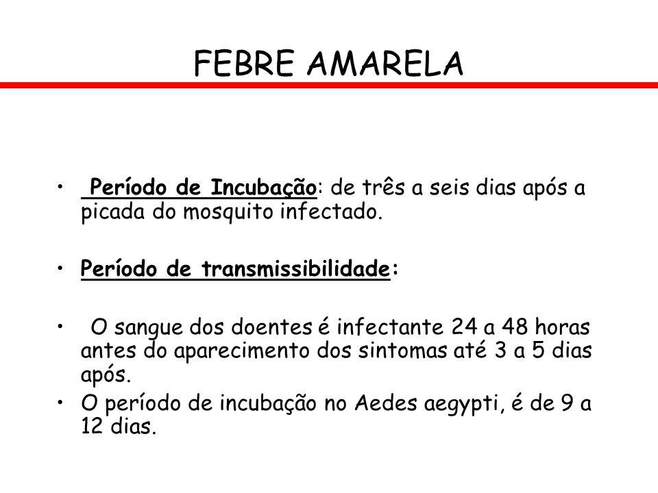 FEBRE AMARELA Período de Incubação: de três a seis dias após a picada do mosquito infectado. Período de transmissibilidade: O sangue dos doentes é inf