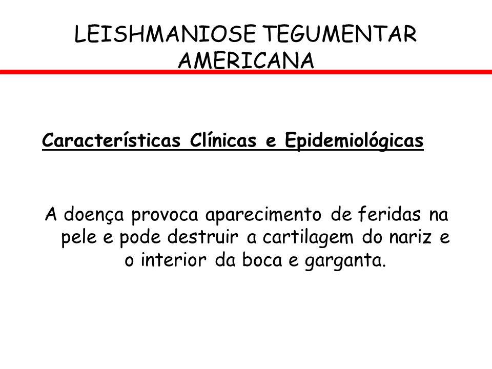 Características Clínicas e Epidemiológicas A doença provoca aparecimento de feridas na pele e pode destruir a cartilagem do nariz e o interior da boca