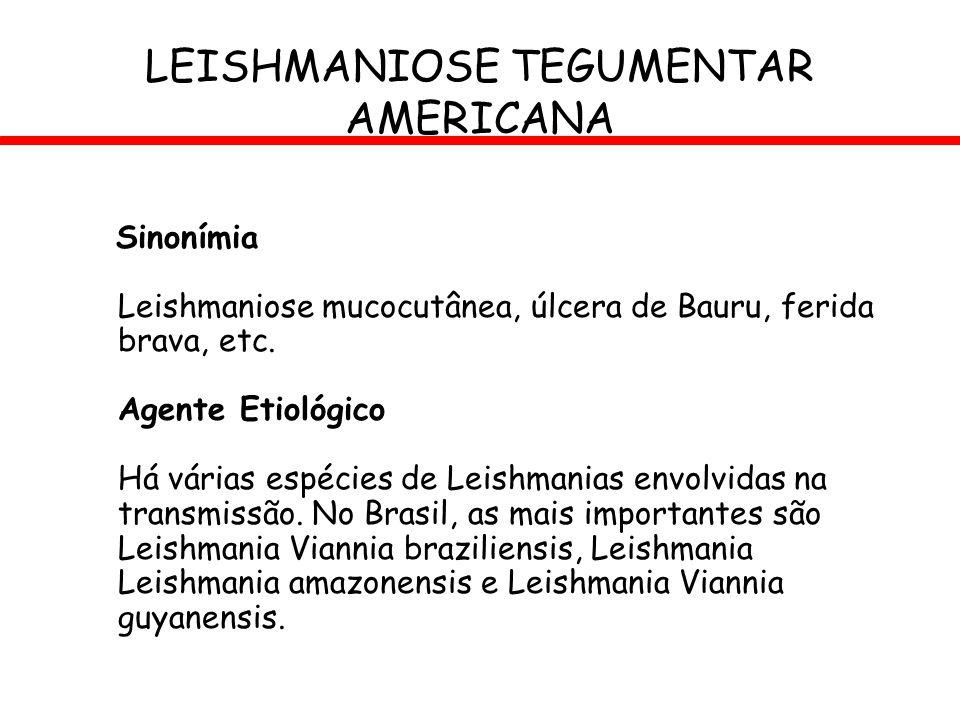 Sinonímia Leishmaniose mucocutânea, úlcera de Bauru, ferida brava, etc. Agente Etiológico Há várias espécies de Leishmanias envolvidas na transmissão.