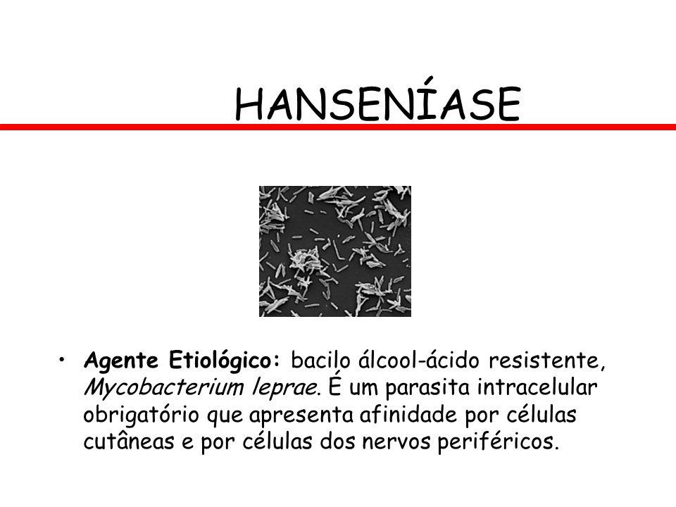 HANSENÍASE Agente Etiológico: bacilo álcool-ácido resistente, Mycobacterium leprae. É um parasita intracelular obrigatório que apresenta afinidade por