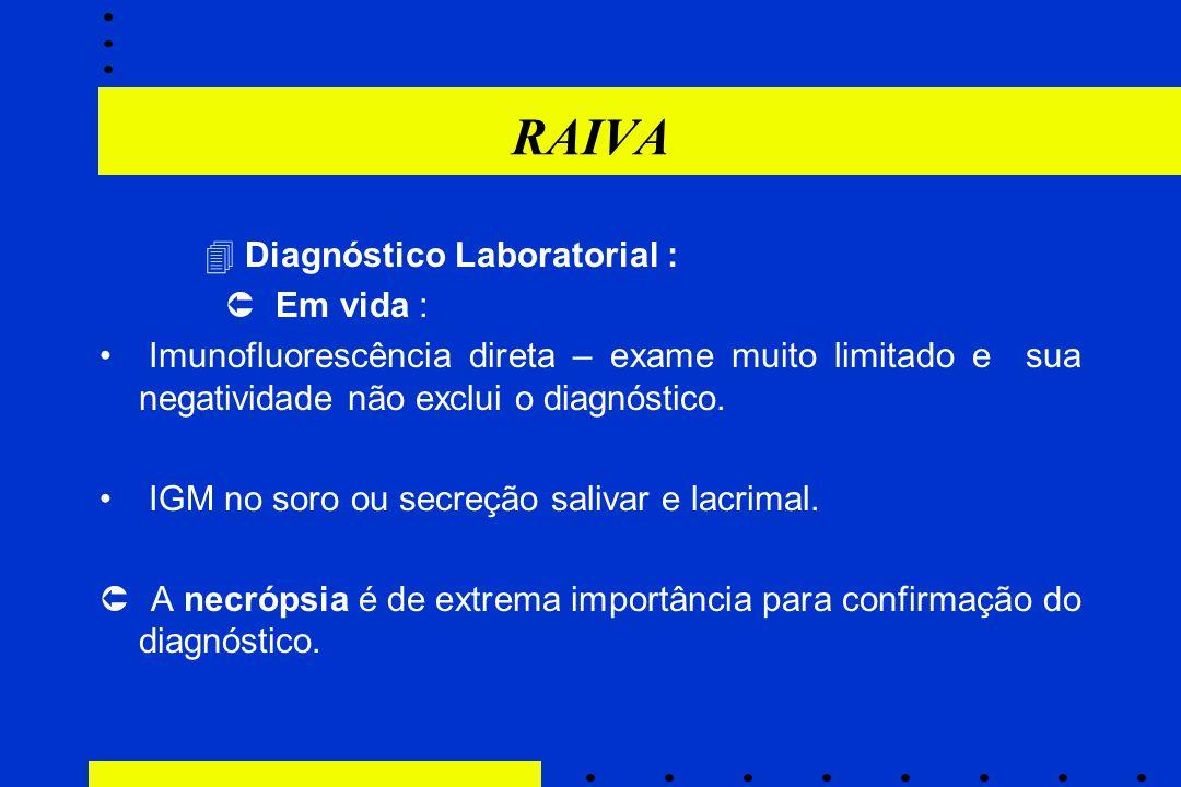 RAIVA  Diagnóstico Laboratorial :  Em vida : Imunofluorescência direta – exame muito limitado e sua negatividade não exclui o diagnóstico. IGM no so