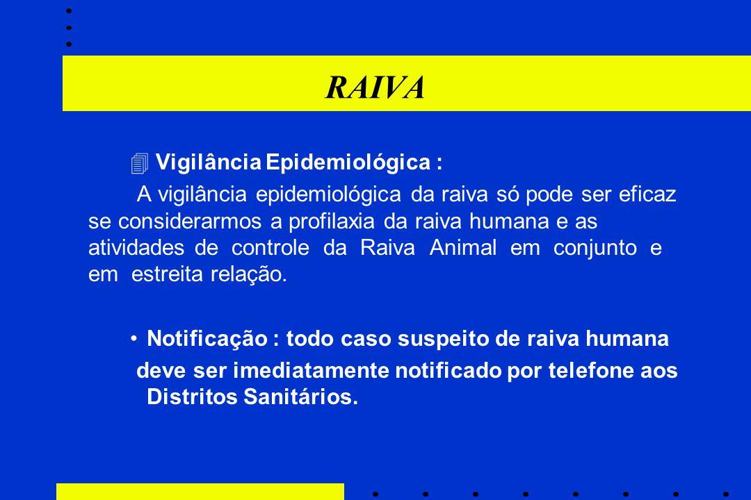 RAIVA  Vigilância Epidemiológica : A vigilância epidemiológica da raiva só pode ser eficaz se considerarmos a profilaxia da raiva humana e as ativida