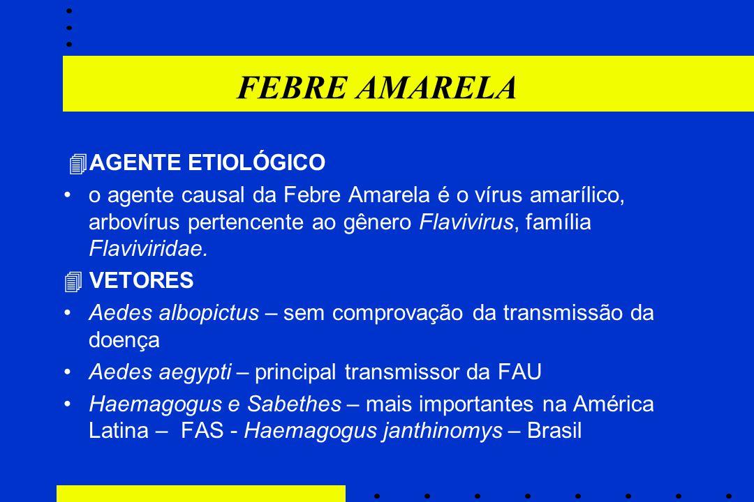 FEBRE AMARELA  AGENTE ETIOLÓGICO o agente causal da Febre Amarela é o vírus amarílico, arbovírus pertencente ao gênero Flavivirus, família Flavivirid
