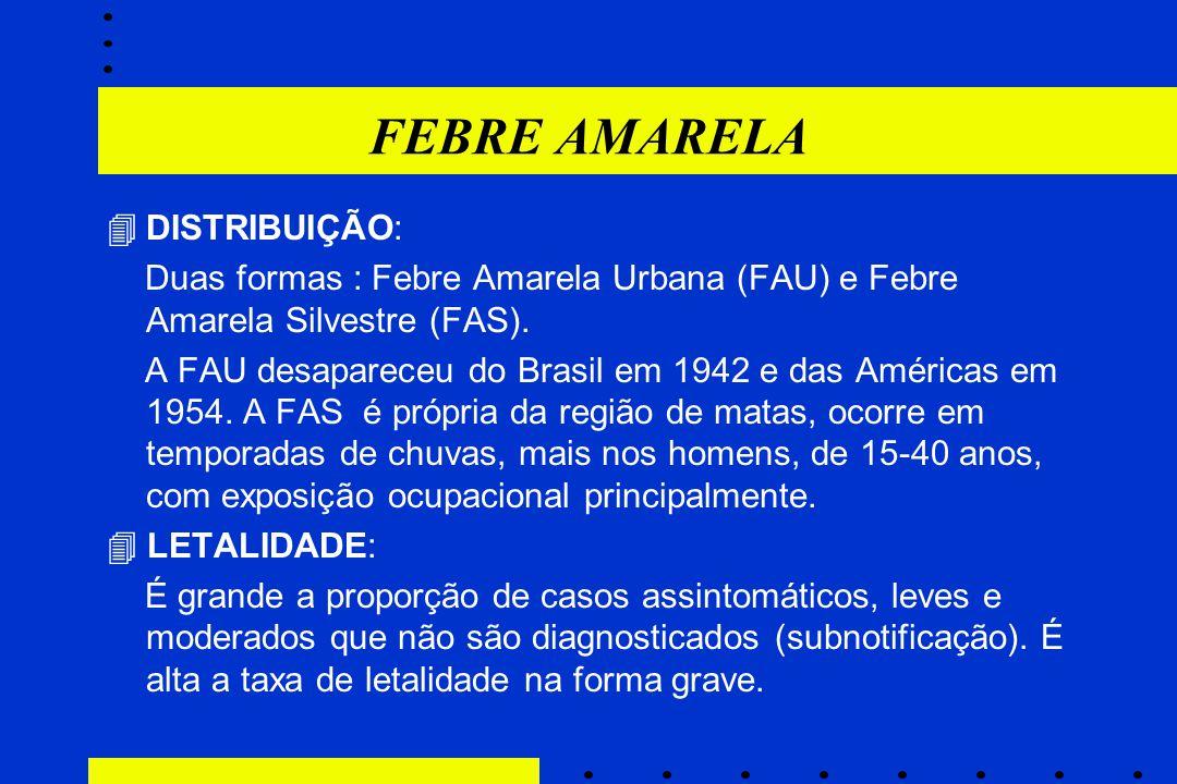 FEBRE AMARELA  DISTRIBUIÇÃO: Duas formas : Febre Amarela Urbana (FAU) e Febre Amarela Silvestre (FAS). A FAU desapareceu do Brasil em 1942 e das Amér