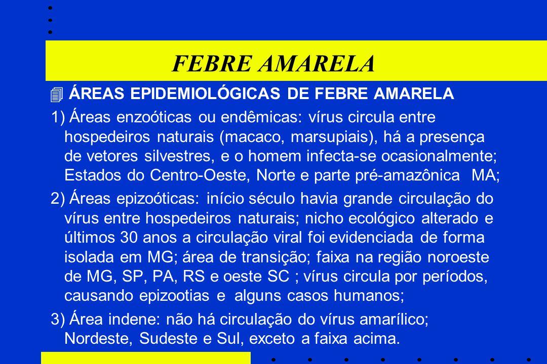 FEBRE AMARELA  ÁREAS EPIDEMIOLÓGICAS DE FEBRE AMARELA 1) Áreas enzoóticas ou endêmicas: vírus circula entre hospedeiros naturais (macaco, marsupiais)