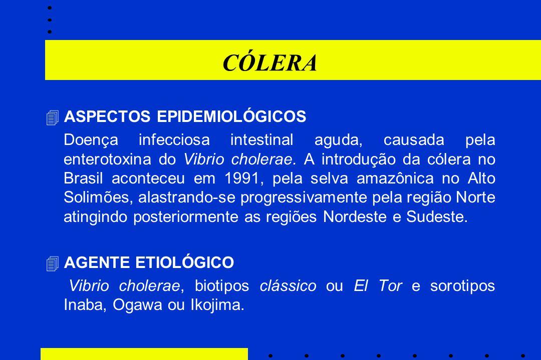 CÓLERA  ASPECTOS EPIDEMIOLÓGICOS Doença infecciosa intestinal aguda, causada pela enterotoxina do Vibrio cholerae. A introdução da cólera no Brasil a