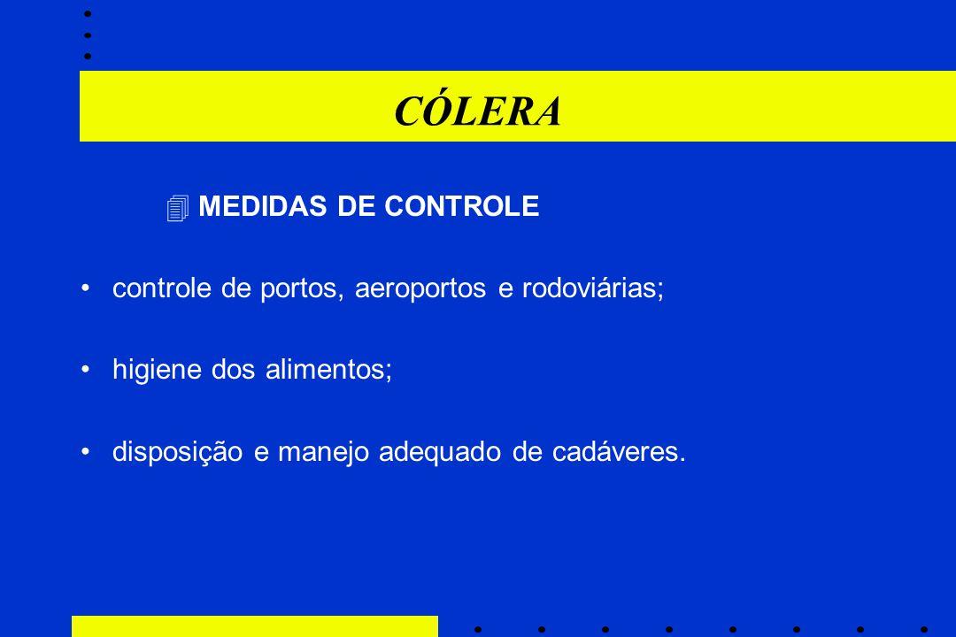 CÓLERA  MEDIDAS DE CONTROLE controle de portos, aeroportos e rodoviárias; higiene dos alimentos; disposição e manejo adequado de cadáveres.