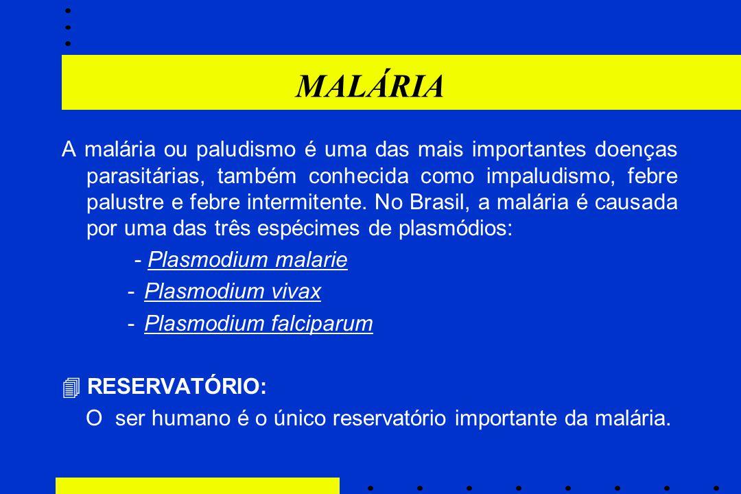 MALÁRIA A malária ou paludismo é uma das mais importantes doenças parasitárias, também conhecida como impaludismo, febre palustre e febre intermitente