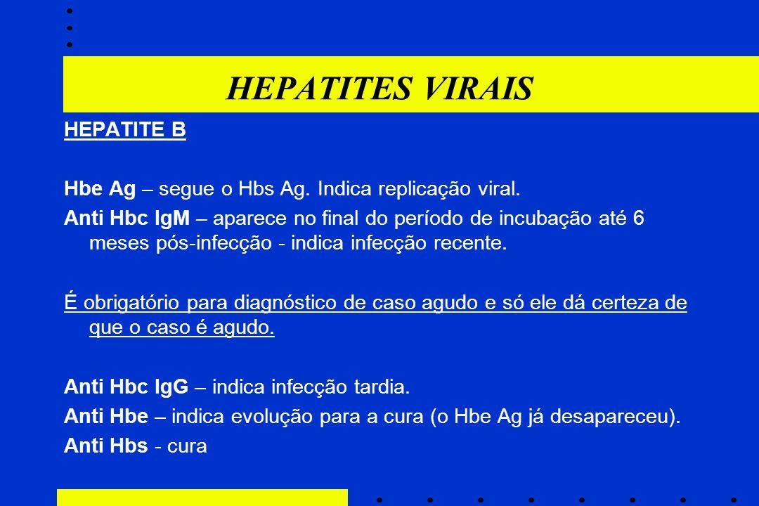 HEPATITES VIRAIS HEPATITE B Hbe Ag – segue o Hbs Ag. Indica replicação viral. Anti Hbc IgM – aparece no final do período de incubação até 6 meses pós-