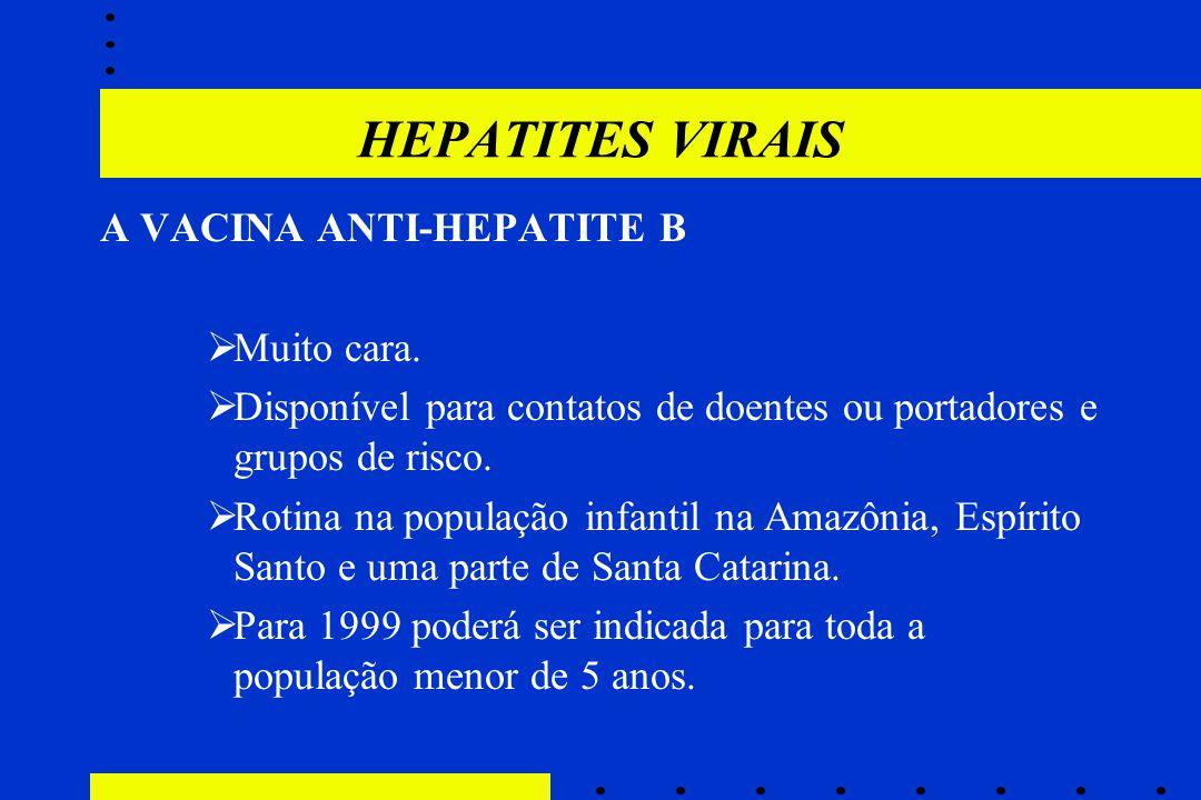 HEPATITES VIRAIS A VACINA ANTI-HEPATITE B  Muito cara.  Disponível para contatos de doentes ou portadores e grupos de risco.  Rotina na população i