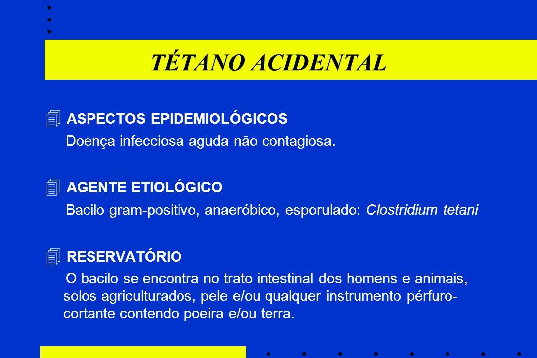TÉTANO ACIDENTAL  ASPECTOS EPIDEMIOLÓGICOS Doença infecciosa aguda não contagiosa.  AGENTE ETIOLÓGICO Bacilo gram-positivo, anaeróbico, esporulado: