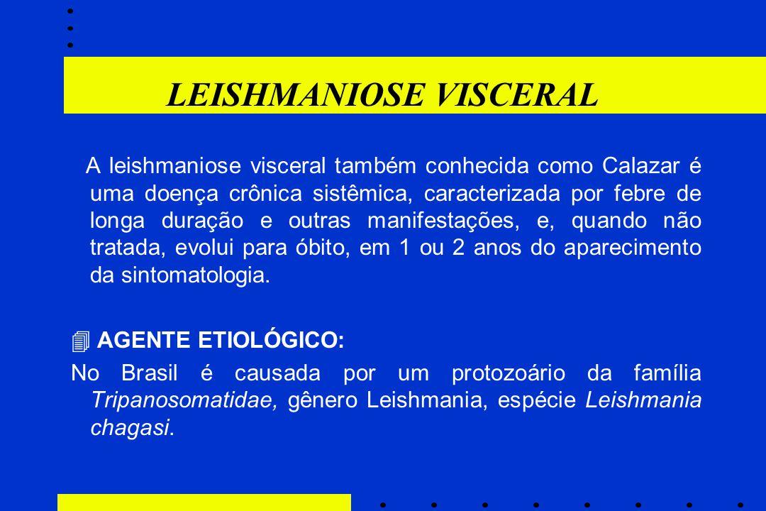 LEISHMANIOSE VISCERAL A leishmaniose visceral também conhecida como Calazar é uma doença crônica sistêmica, caracterizada por febre de longa duração e