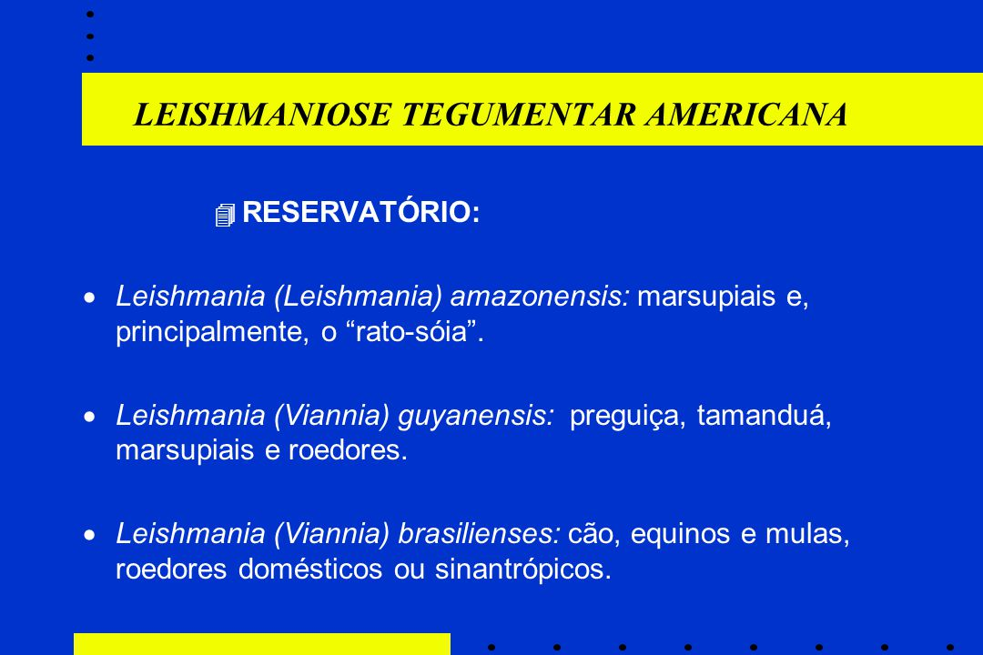 "LEISHMANIOSE TEGUMENTAR AMERICANA  RESERVATÓRIO:  Leishmania (Leishmania) amazonensis: marsupiais e, principalmente, o ""rato-sóia"".  Leishmania (Vi"