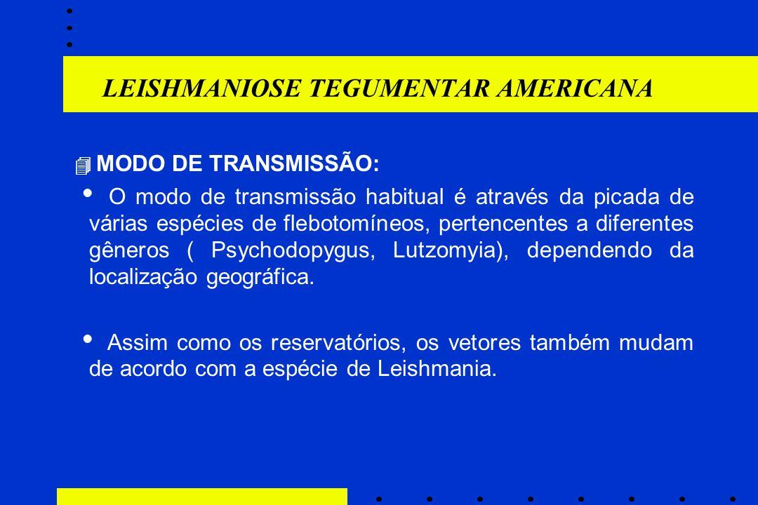 LEISHMANIOSE TEGUMENTAR AMERICANA  MODO DE TRANSMISSÃO:  O modo de transmissão habitual é através da picada de várias espécies de flebotomíneos, per