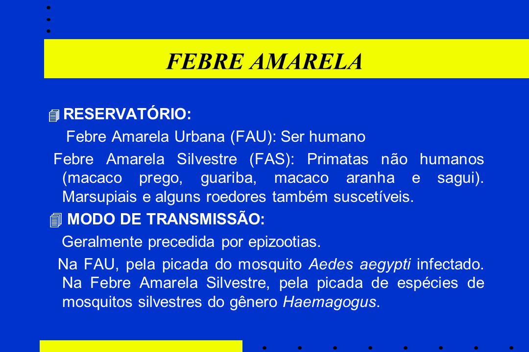 FEBRE AMARELA  RESERVATÓRIO: Febre Amarela Urbana (FAU): Ser humano Febre Amarela Silvestre (FAS): Primatas não humanos (macaco prego, guariba, macac