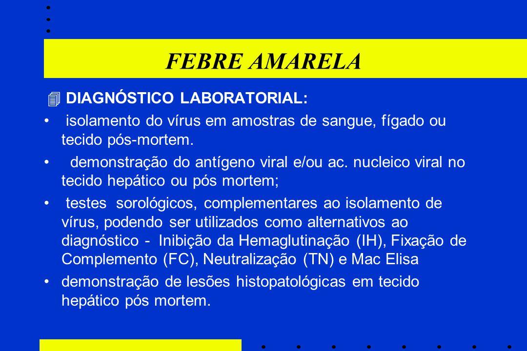 FEBRE AMARELA  DIAGNÓSTICO LABORATORIAL: isolamento do vírus em amostras de sangue, fígado ou tecido pós-mortem. demonstração do antígeno viral e/ou