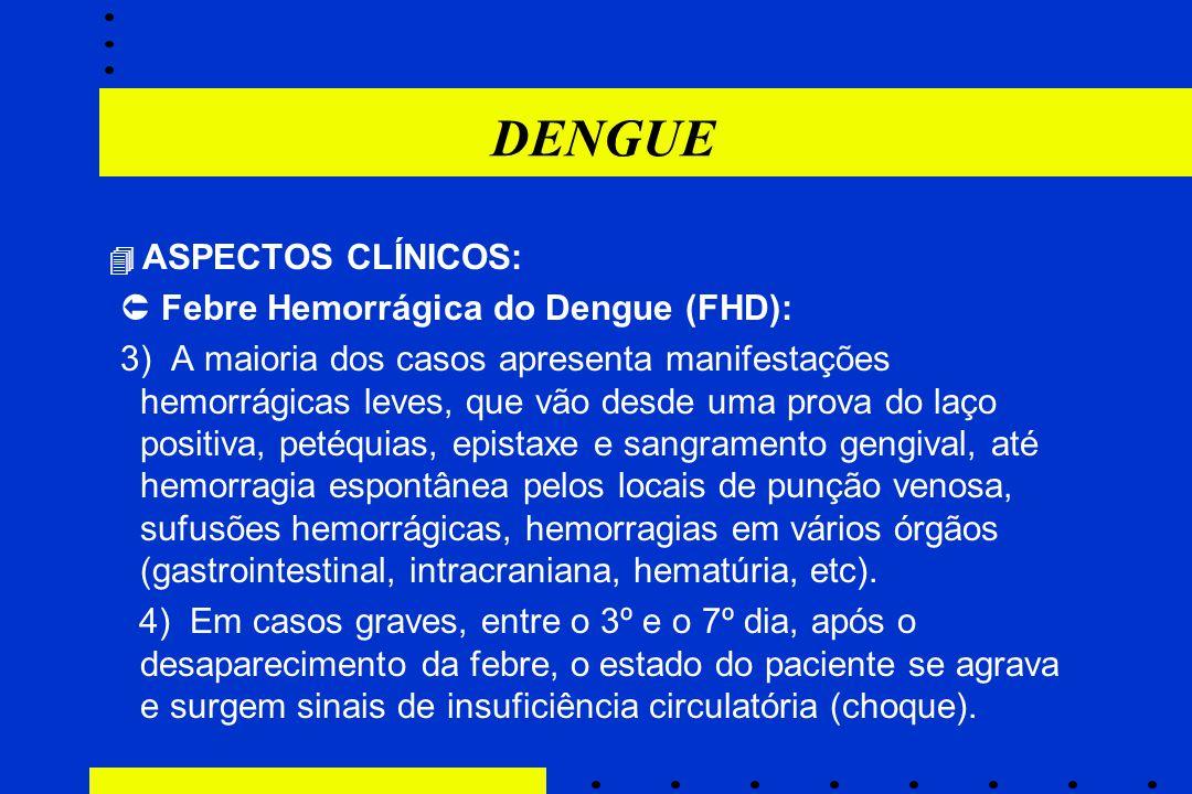 DENGUE  ASPECTOS CLÍNICOS:  Febre Hemorrágica do Dengue (FHD): 3) A maioria dos casos apresenta manifestações hemorrágicas leves, que vão desde uma