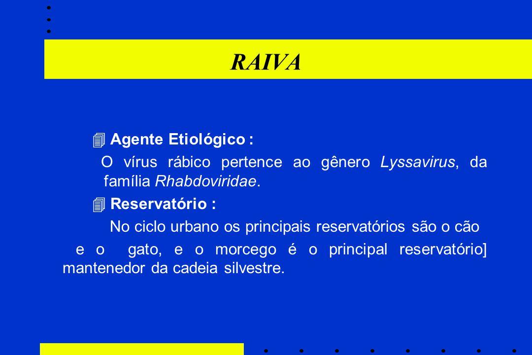RAIVA  Agente Etiológico : O vírus rábico pertence ao gênero Lyssavirus, da família Rhabdoviridae.  Reservatório : No ciclo urbano os principais res
