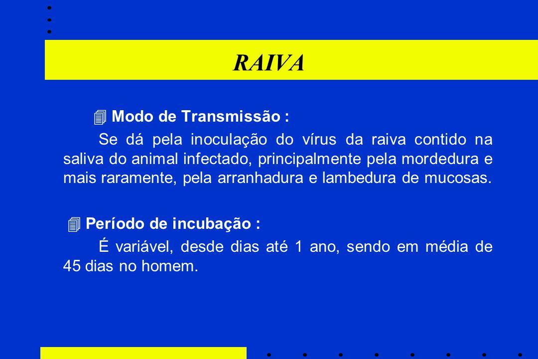 RAIVA  Modo de Transmissão : Se dá pela inoculação do vírus da raiva contido na saliva do animal infectado, principalmente pela mordedura e mais rara