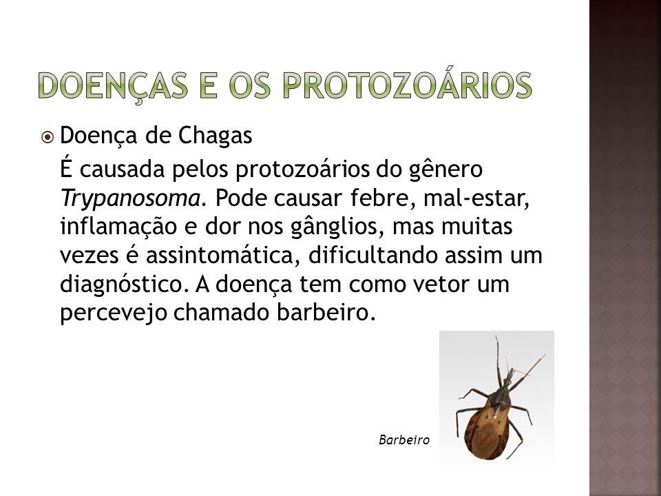  Doença de Chagas É causada pelos protozoários do gênero Trypanosoma. Pode causar febre, mal-estar, inflamação e dor nos gânglios, mas muitas vezes é