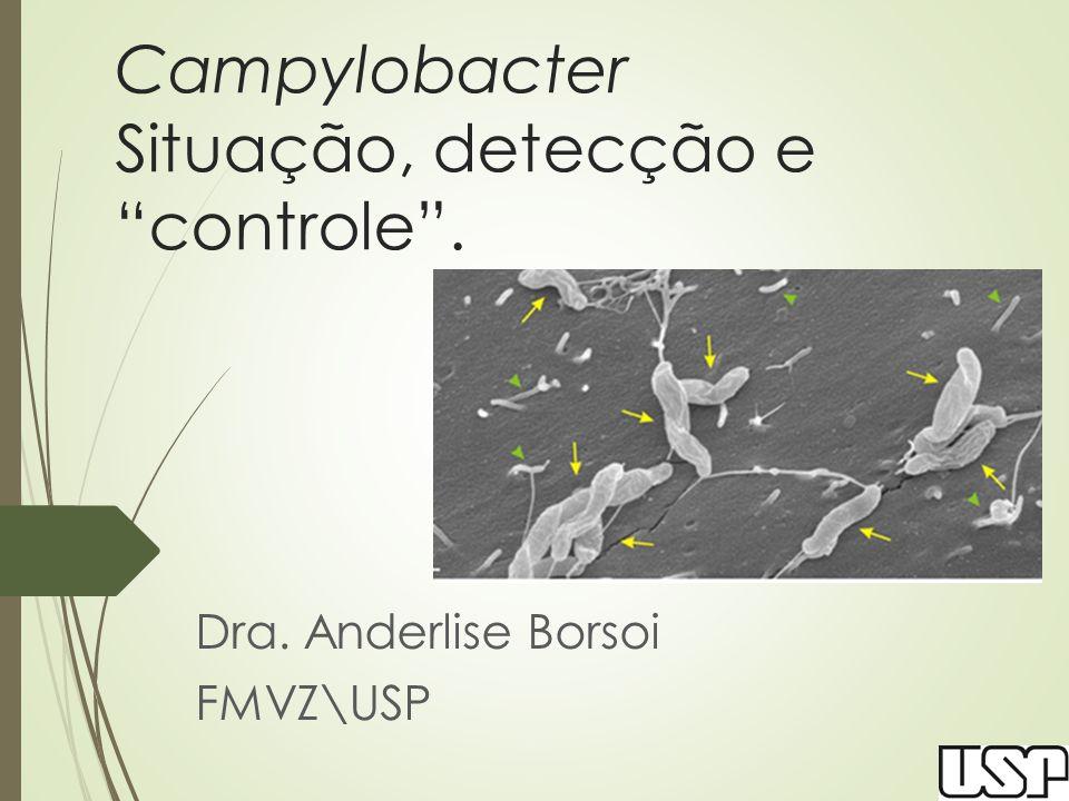 Metodologias estabelecidas  ISO 10272-1:2006 e 10272-2: 2006  Parte 1 descreve o chamado método horizontal para a detecção de Campylobacter spp.