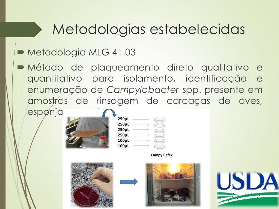 Metodologias estabelecidas  Metodologia MLG 41.03  Método de plaqueamento direto qualitativo e quantitativo para isolamento, identificação e enumera