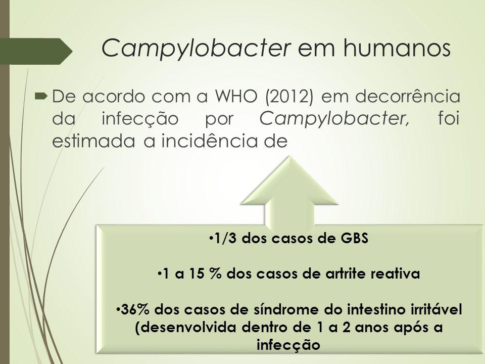 Campylobacter em humanos  De acordo com a WHO (2012) em decorrência da infecção por Campylobacter, foi estimada a incidência de 1/3 dos casos de GBS