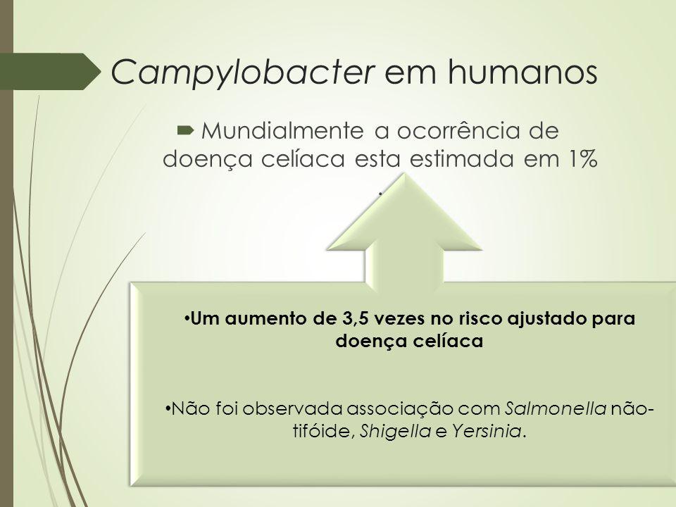 Campylobacter em humanos  Mundialmente a ocorrência de doença celíaca esta estimada em 1%. Um aumento de 3,5 vezes no risco ajustado para doença celí