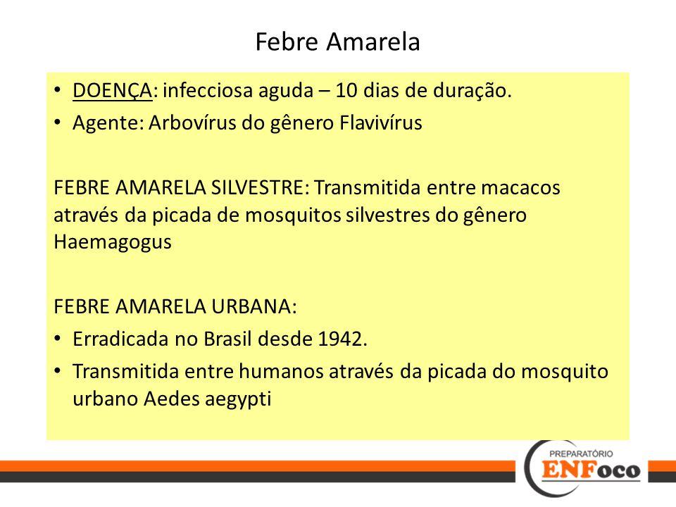 Febre Amarela DOENÇA: infecciosa aguda – 10 dias de duração. Agente: Arbovírus do gênero Flavivírus FEBRE AMARELA SILVESTRE: Transmitida entre macacos