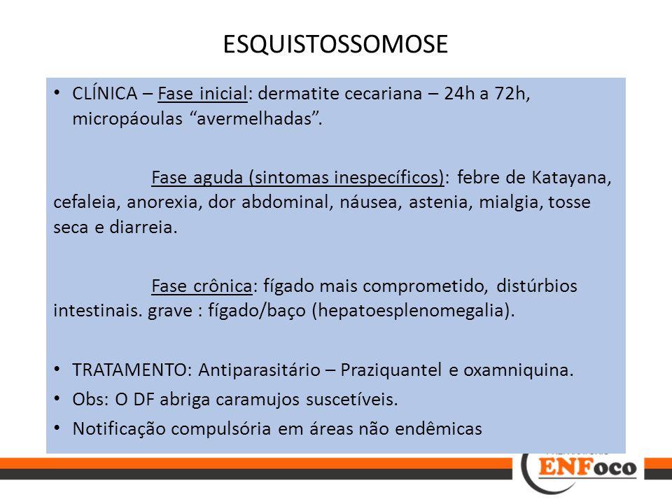 """ESQUISTOSSOMOSE CLÍNICA – Fase inicial: dermatite cecariana – 24h a 72h, micropáoulas """"avermelhadas"""". Fase aguda (sintomas inespecíficos): febre de Ka"""