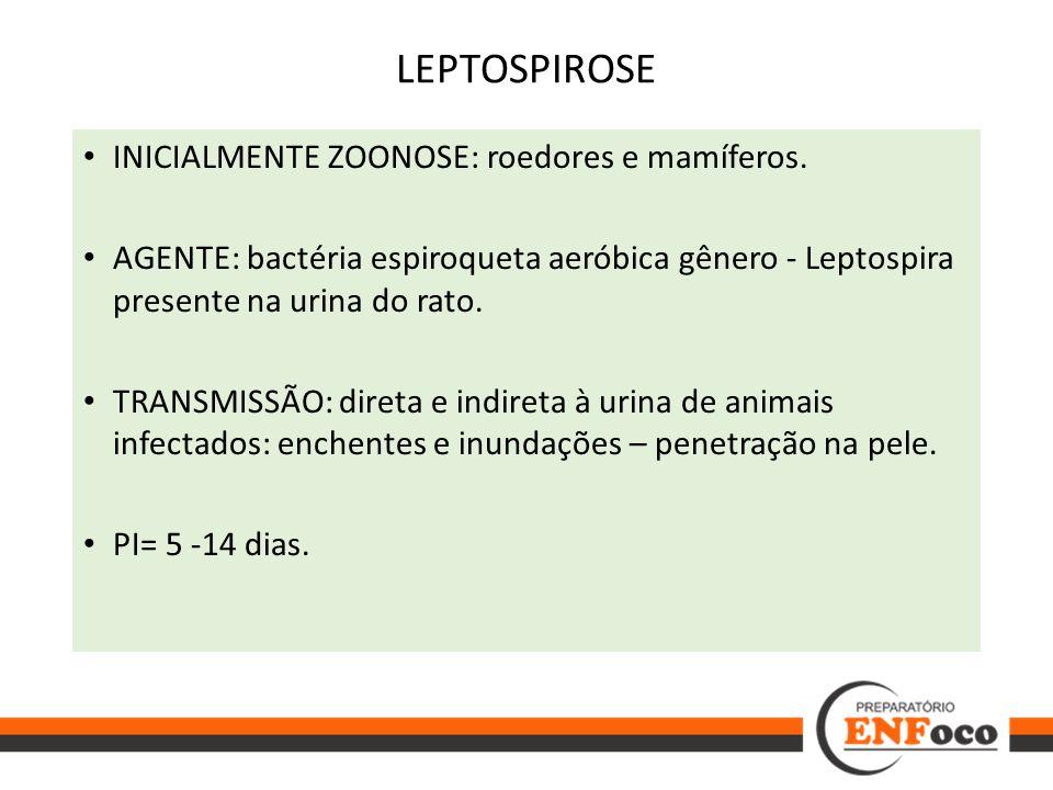INICIALMENTE ZOONOSE: roedores e mamíferos. AGENTE: bactéria espiroqueta aeróbica gênero - Leptospira presente na urina do rato. TRANSMISSÃO: direta e