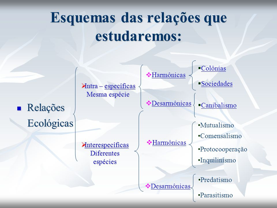 Esquemas das relações que estudaremos: Relações Relações Ecológicas Ecológicas  Intra – específicas específicas Mesma espécie  Interespecíficas Inte