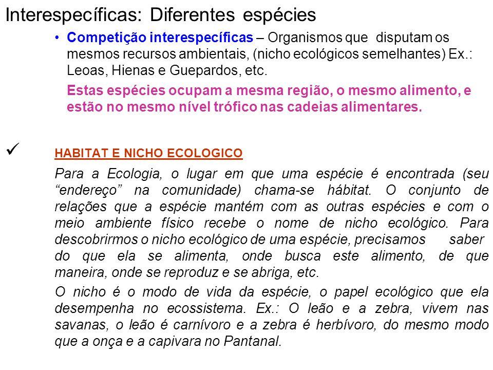 Interespecíficas: Diferentes espécies Competição interespecíficas – Organismos que disputam os mesmos recursos ambientais, (nicho ecológicos semelhant