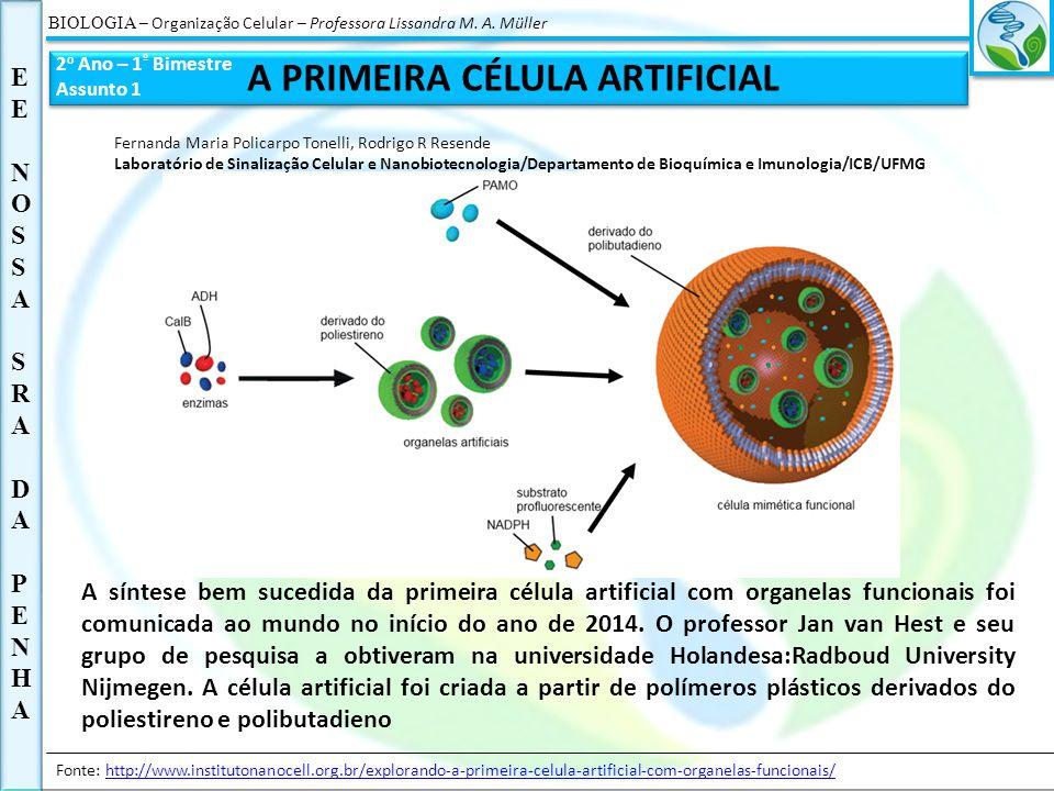 BIOLOGIA – Organização Celular – Professora Lissandra M. A. Müller E EENOSSA SRA DA PENHAEENOSSA SRA DA PENHA 2 o Ano – 1 º Bimestre Assunto 1 A PRIME