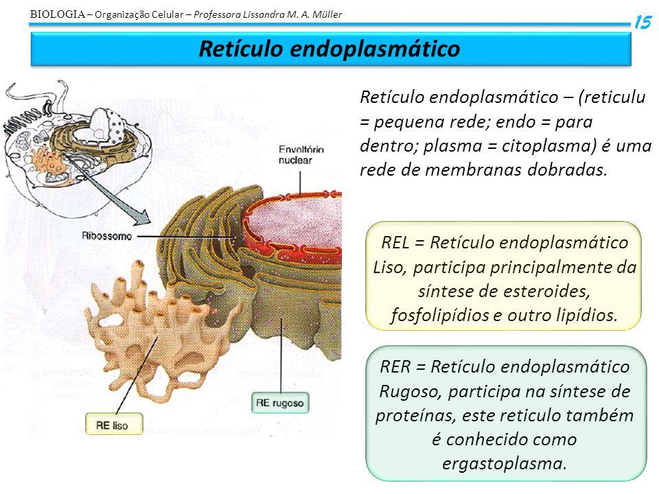 Retículo endoplasmático 15 BIOLOGIA – Organização Celular – Professora Lissandra M. A. Müller Retículo endoplasmático – (reticulu = pequena rede; endo