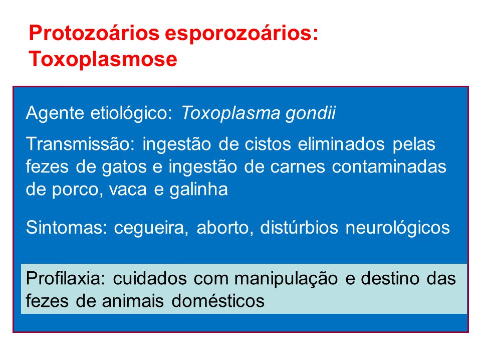 Protozoários esporozoários: Toxoplasmose Agente etiológico: Toxoplasma gondii Transmissão: ingestão de cistos eliminados pelas fezes de gatos e ingest