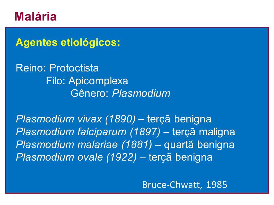 Malária Agentes etiológicos: Reino: Protoctista Filo: Apicomplexa Gênero: Plasmodium Plasmodium vivax (1890) – terçã benigna Plasmodium falciparum (18
