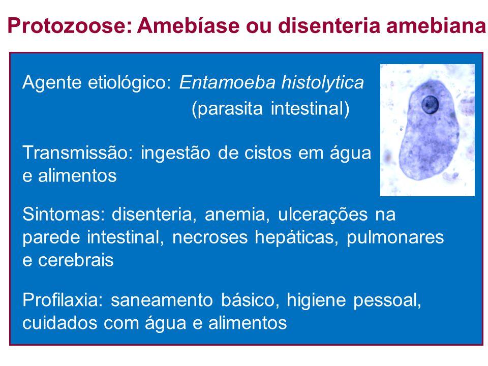 Agente etiológico: Entamoeba histolytica (parasita intestinal) Protozoose: Amebíase ou disenteria amebiana Transmissão: ingestão de cistos em água e a