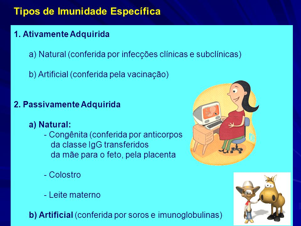 Tipos de Imunidade Específica 1. Ativamente Adquirida a) Natural (conferida por infecções clínicas e subclínicas) b) Artificial (conferida pela vacina