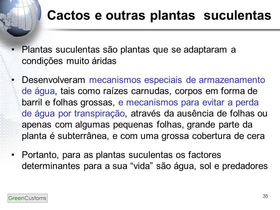 35 Cactos e outras plantas suculentas Plantas suculentas são plantas que se adaptaram a condições muito áridas Desenvolveram mecanismos especiais de a