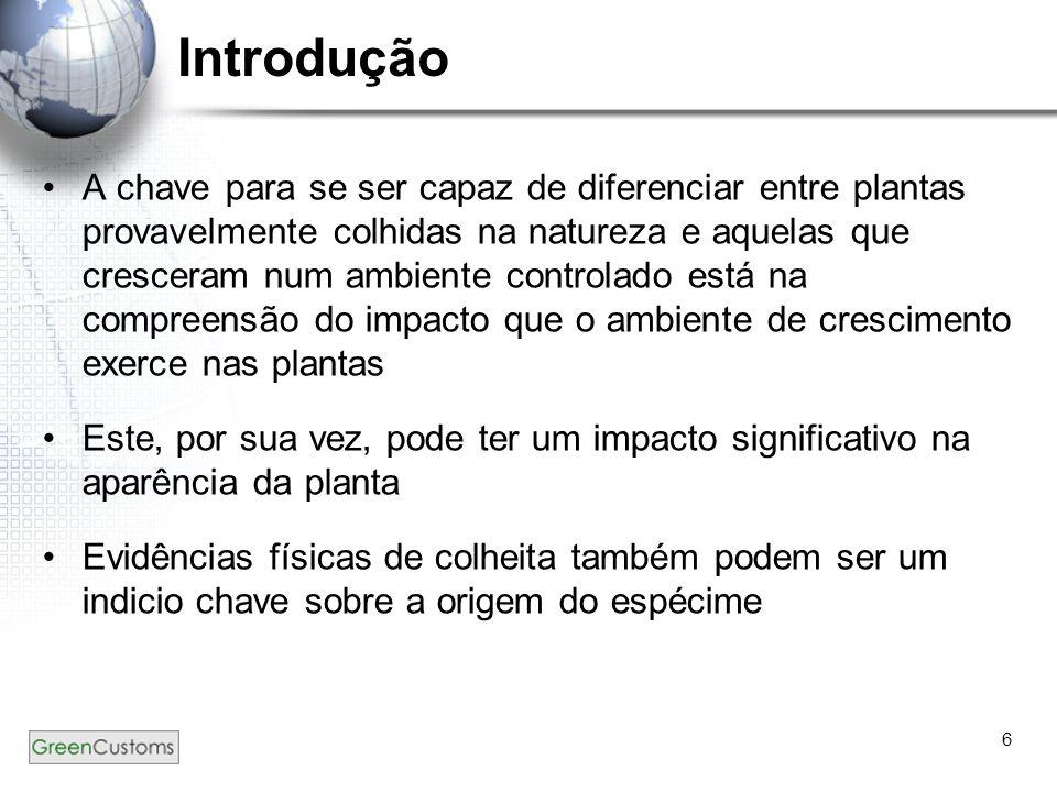 6 Introdução A chave para se ser capaz de diferenciar entre plantas provavelmente colhidas na natureza e aquelas que cresceram num ambiente controlado